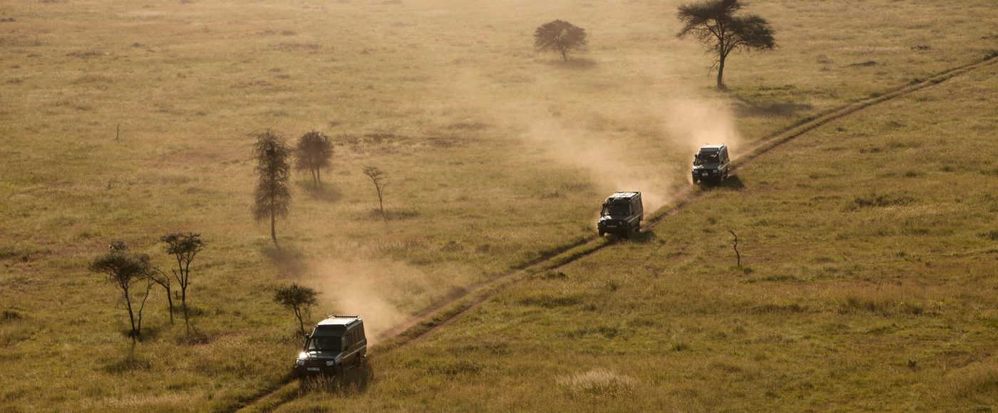 Sunset on the Serengeti—Africa