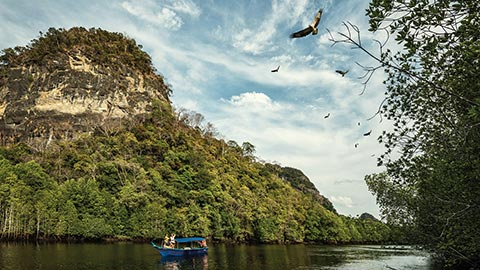 Viaje hacia el corazón del Geoparque de la Unesco en Langkawi y disfrute de un emocionante paseo ecológico, guiado por un naturalista de Four Seasons, entre animales exóticos y cuevas de piedra caliza.