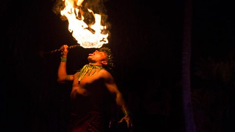 Enjoy dinner and a show during your private Hawaiian luau
