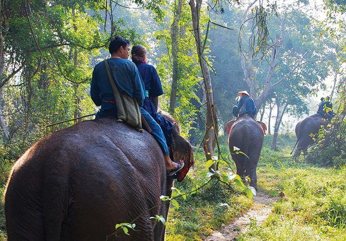 Four Seasons Tented Camp Golden Triangle Thailand