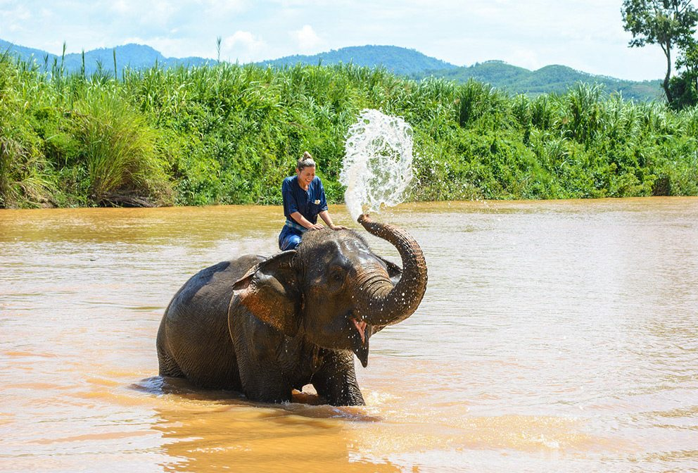 Woman riding elephant in Northern Thailand