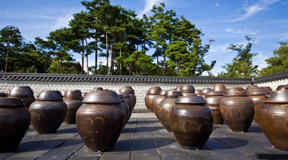 Seoul Fermenting Urns
