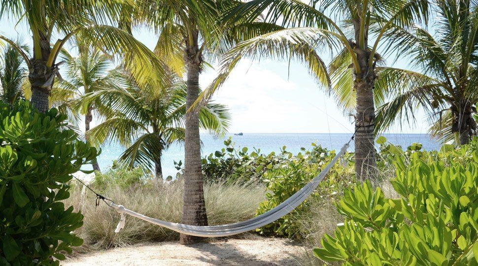 Anguilla hammock