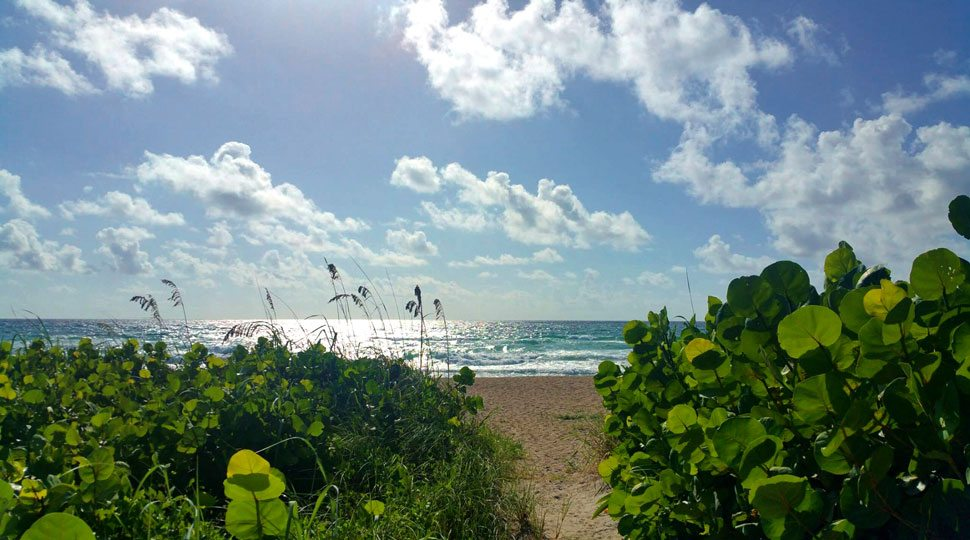 pbf-beach_970x540
