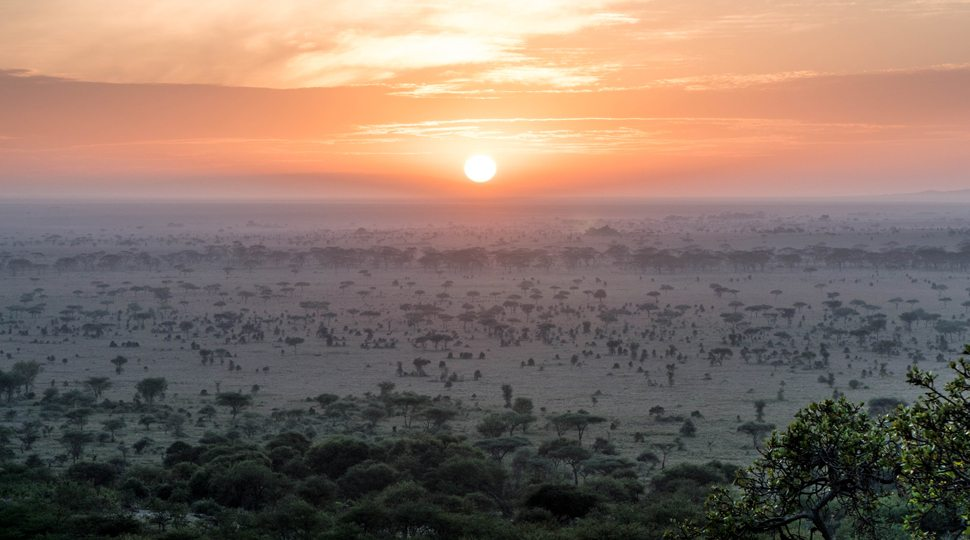The view of the sunset from the Four Seasons Serengeti