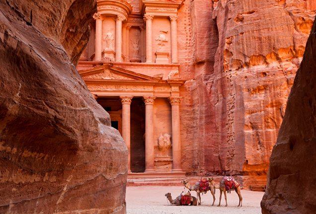 Camels outside Petra