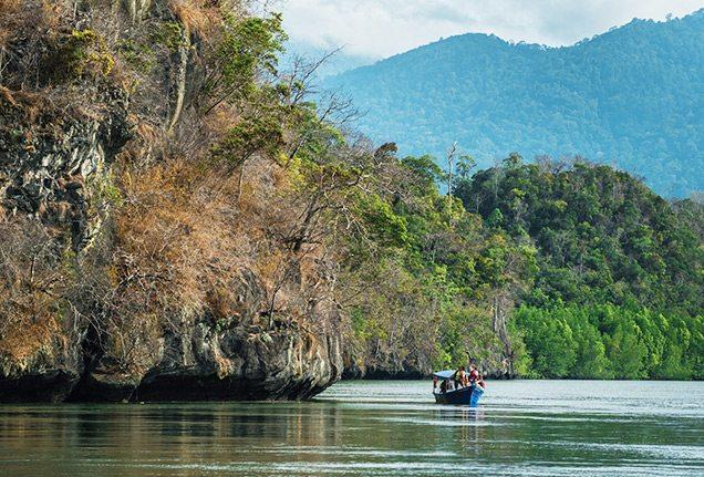 Boat floating through Langkawi mangroves