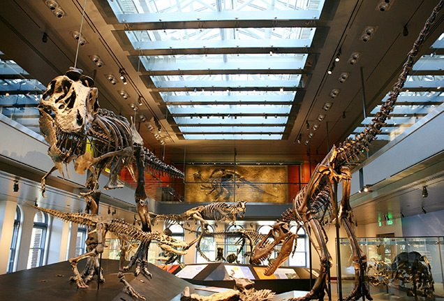 Natural History Museum of Los Angles