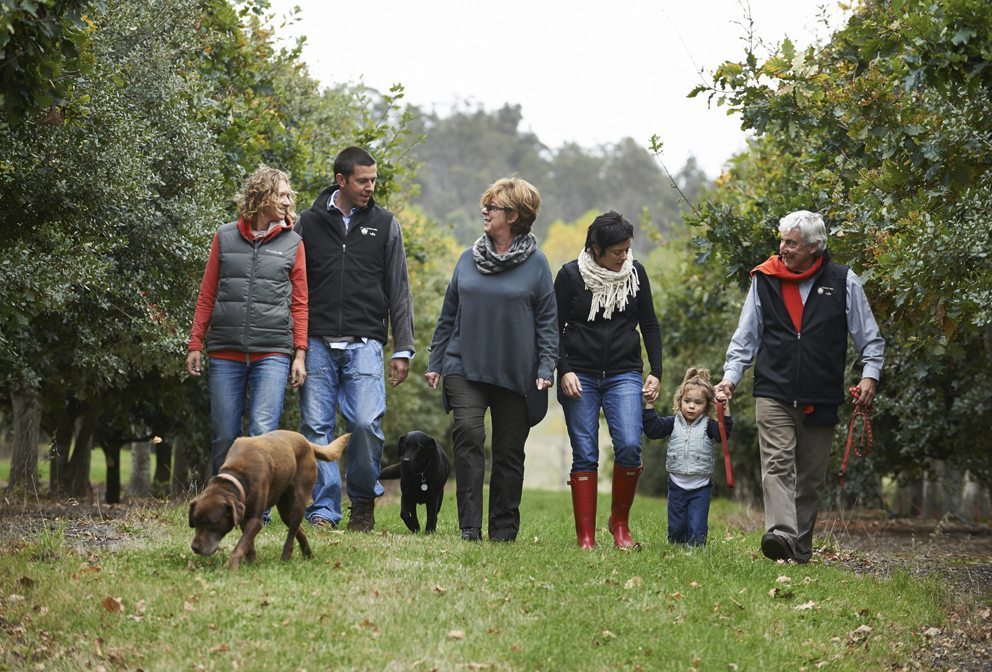 Group truffle hunting in Tamar Valley