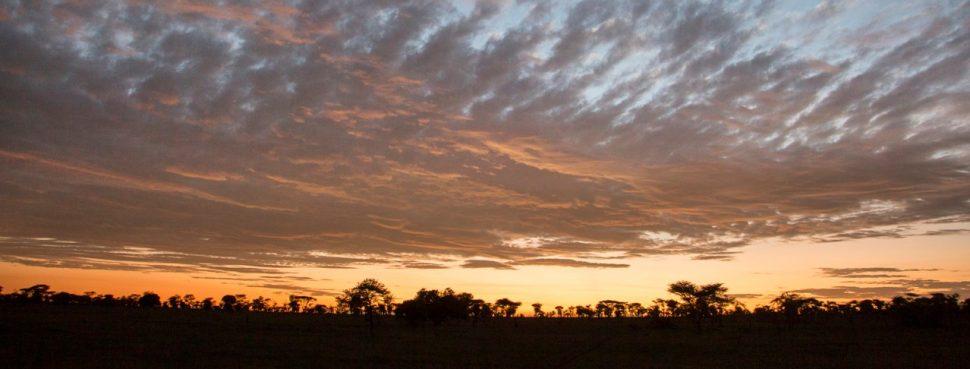 Serengeti sky