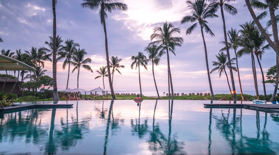Palm trees over pool