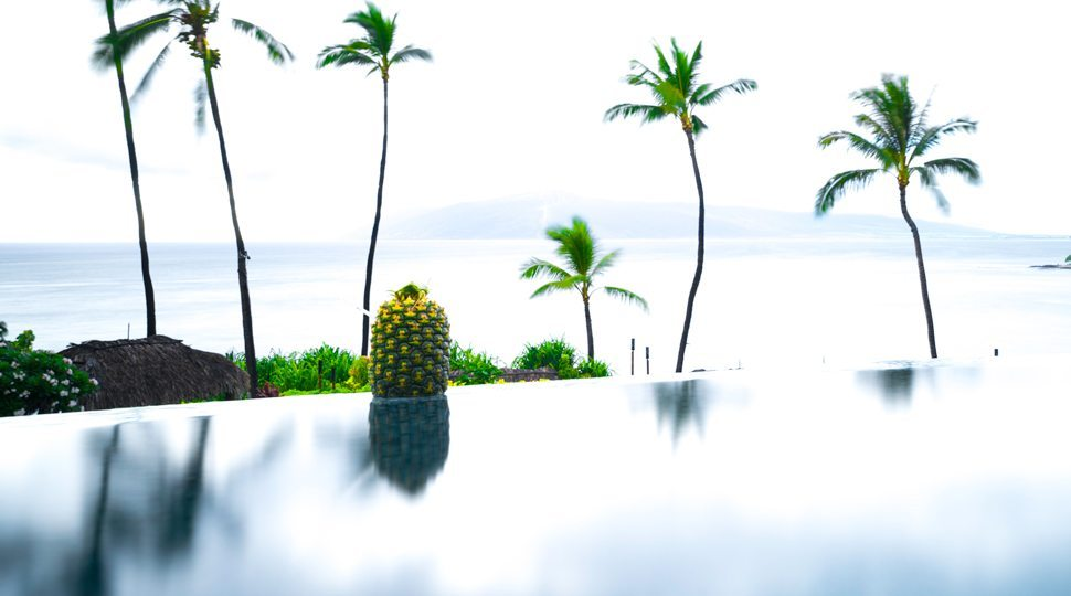 Pineapple by side of infinity pool