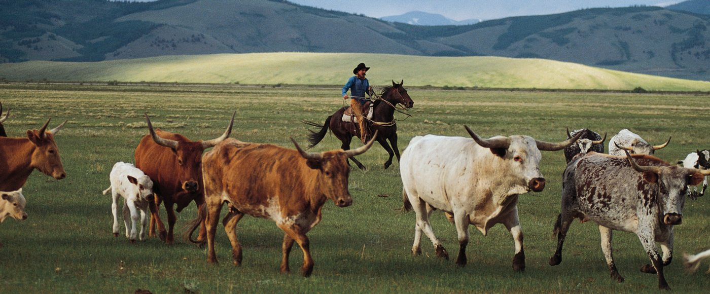 7X Ranch near Four Seasons Resort and Residences Vail