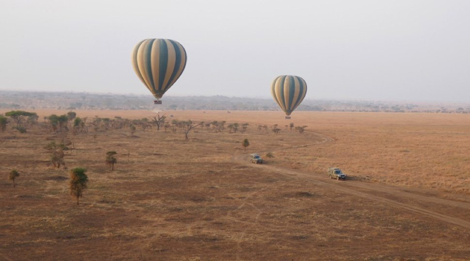 Hot Air balloons above the Serengeti