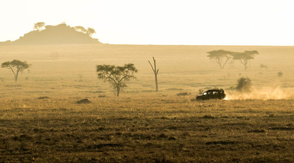 A safari tour from the Four Seasons Serengeti