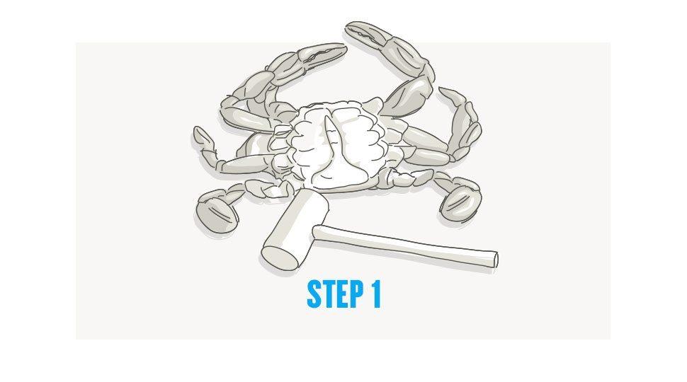 Picking crab step 1