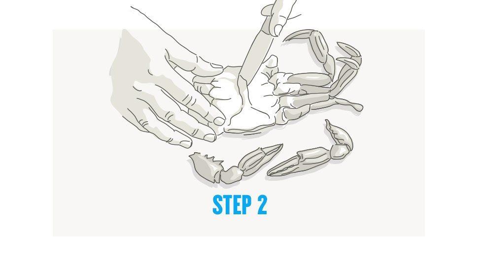 Picking crab step 2
