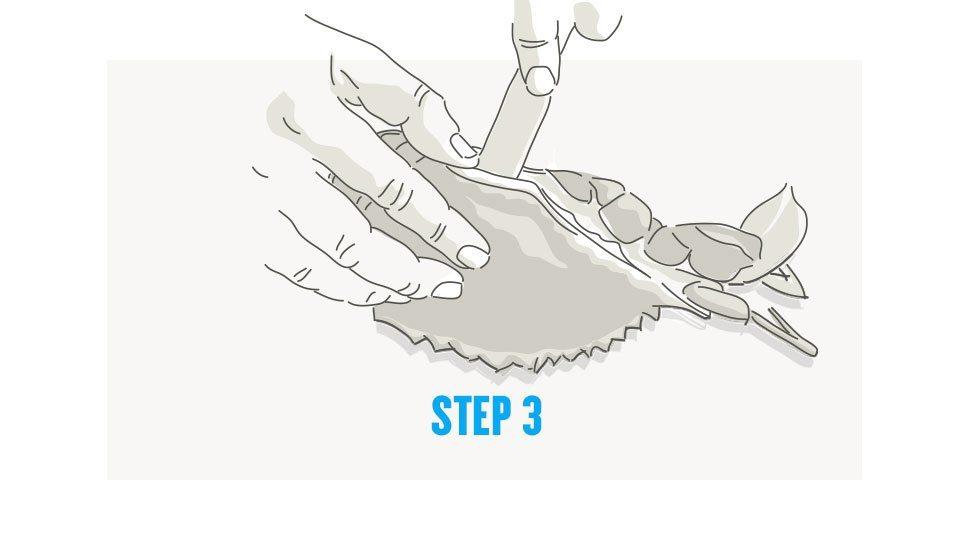 Picking crab step 3