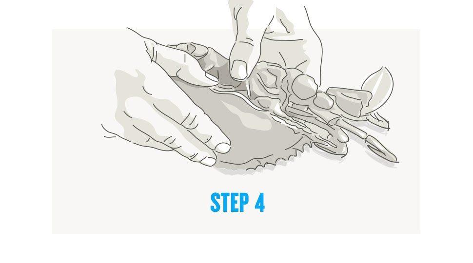 Picking crab step 4