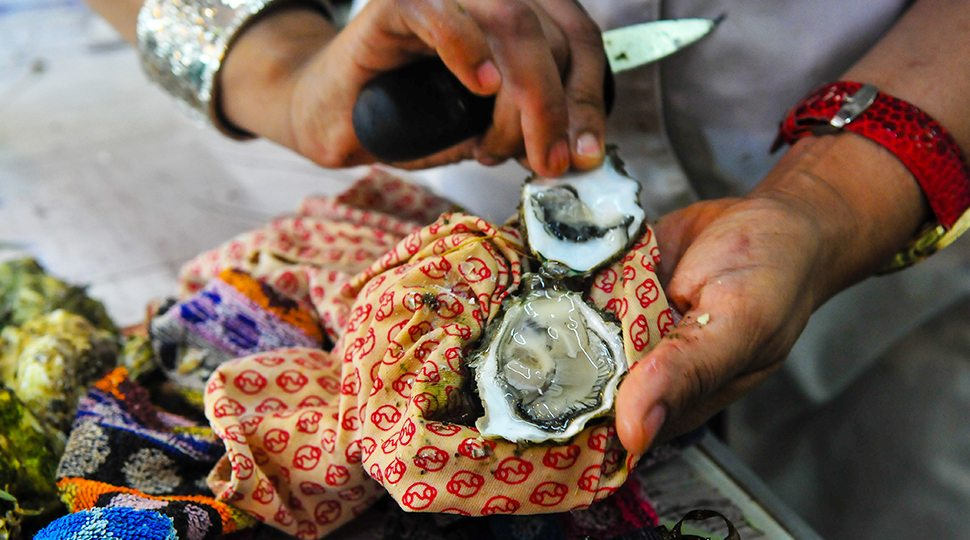 Freshly shucked oyster