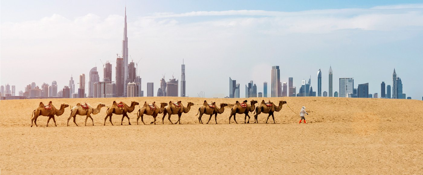 People of dubai an insiders guide four seasons hotels and resorts camels walking in the desert altavistaventures Choice Image