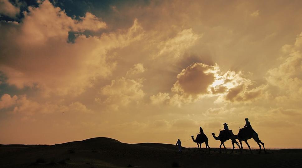 The Camel Trainer Dubai