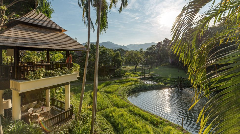 A woman overlooks the pond behind the Four Seasons Resort Chiang Mai