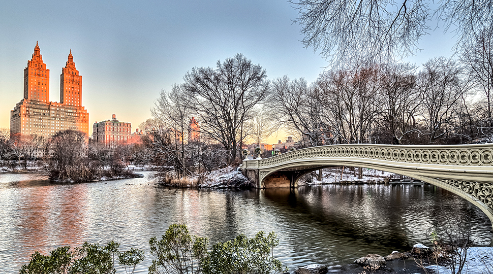 New York City Central Park Bridge In Winter