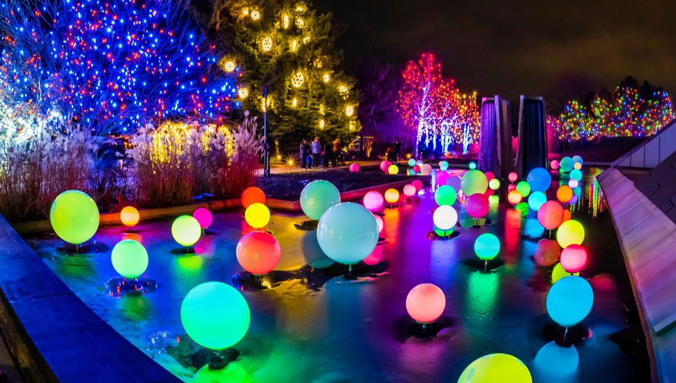The Blossoms of Light display in Denver, Colorado