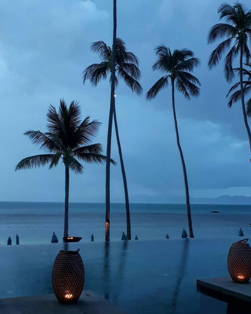 Koh Samui infinity pool with palm trees evening
