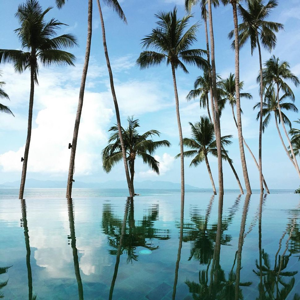 Koh Samui infinity pool with palm trees
