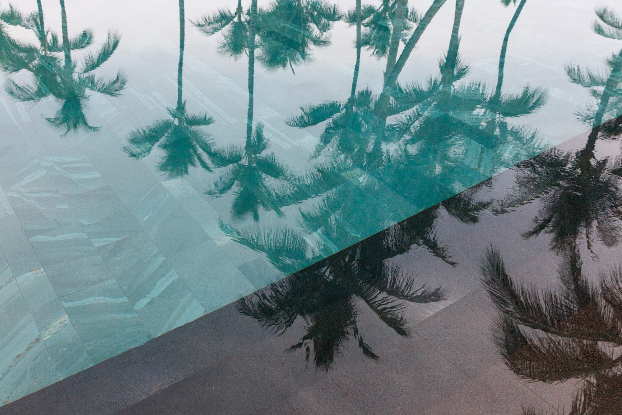 Hualalai teal and grey palm tree reflection