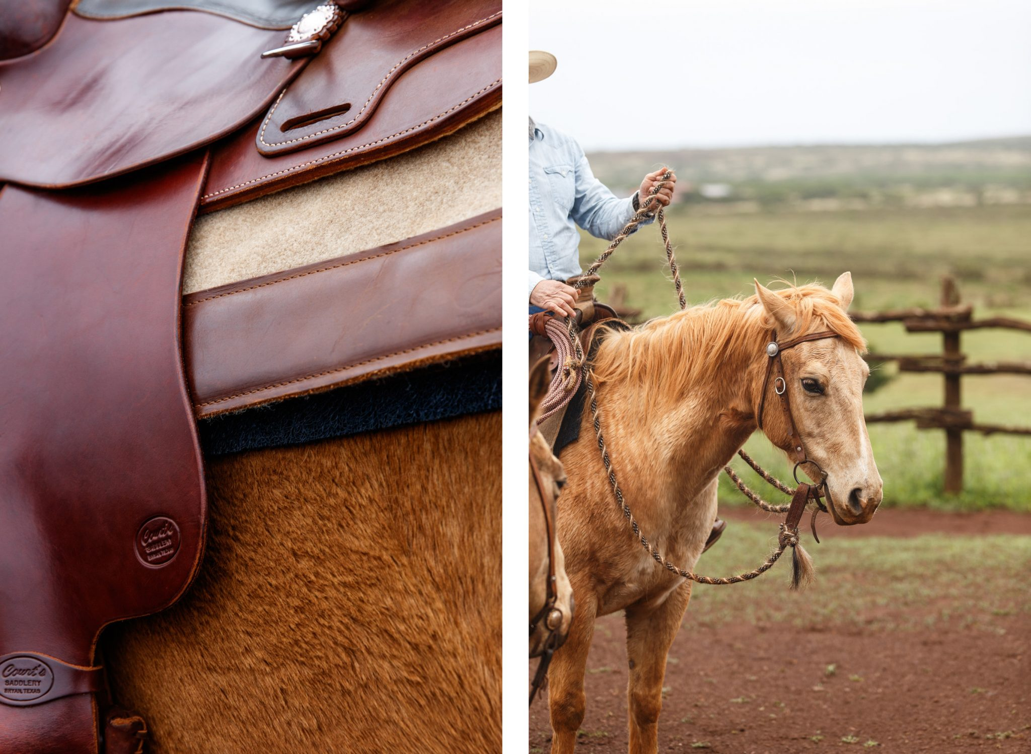 Lanai saddle detail, horse comparison