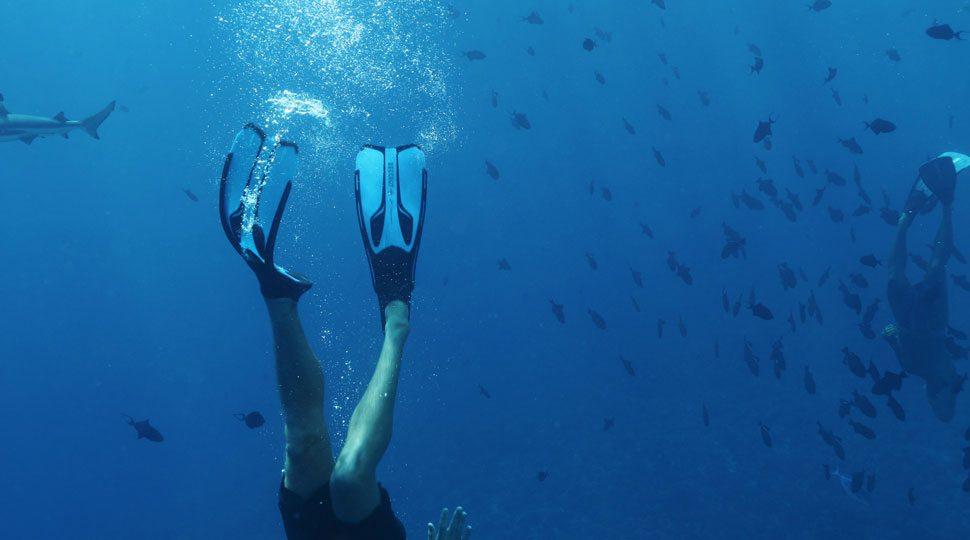 Scuba in Nevis