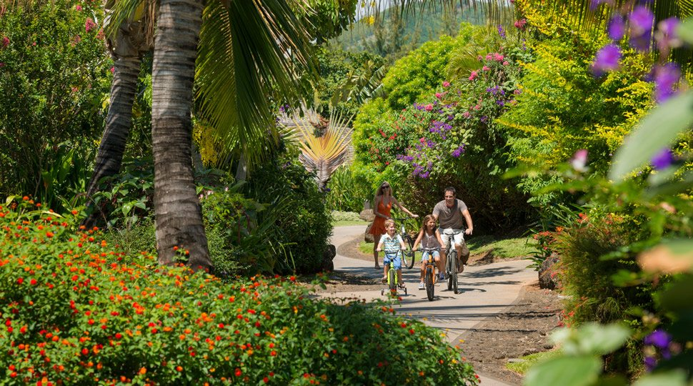 Family bike safari in Mauritius