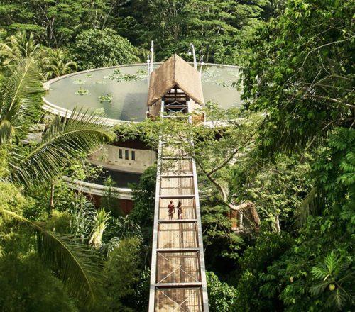 Rooftop Lotus Pond at Four Seasons Resort Bali at Sayan