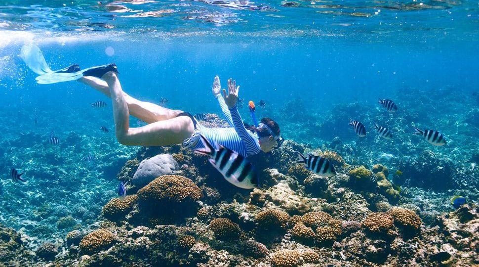 Bora Bora snorkelling