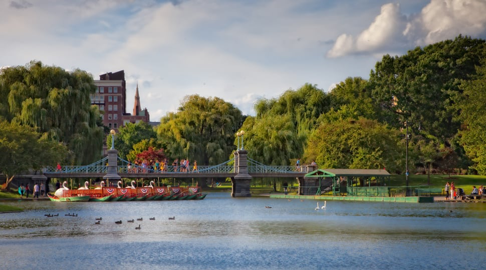 Swan boat rides at Boston Public Garden