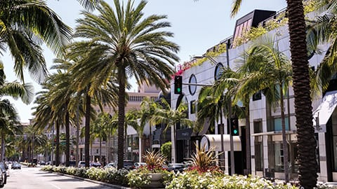 View of Rodeo Drive