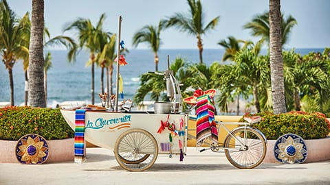 Travelling Churro Cart