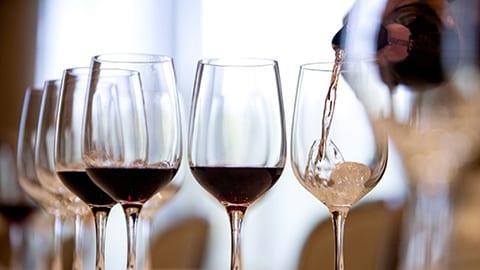 Sips of Argentina - Wine Masterclass