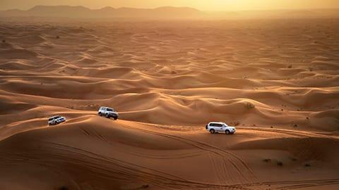 Desert Nature Drive