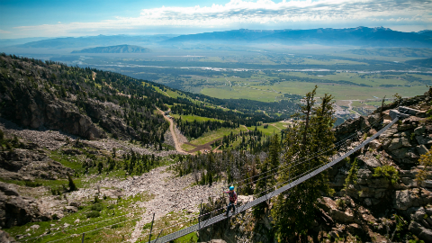 Suspended bridge in Jackson Hole