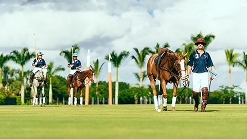 Polo players with their horses