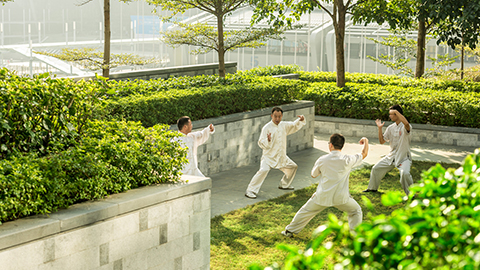 Tai Chi on the Terrace