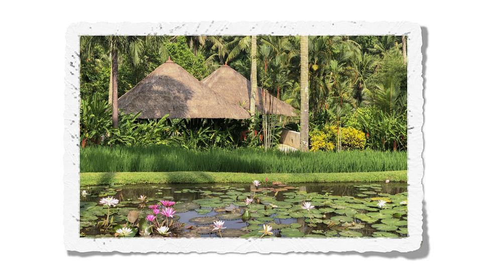 FS Bali Sayan