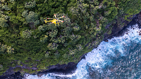 Helicopter trip in Maui
