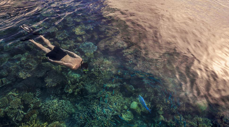 Man snorkeling in clear ocean water